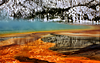 Yellowstone National Park :